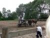 reunie rijvereniging st servatius juli 2011 005